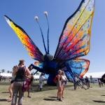 Coachella-4136.jpg