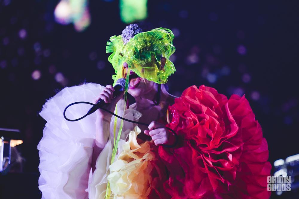 Björk by Andrew Gomez