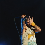 Red Hot Chili Peppers at Ohana Fest by Steven Ward