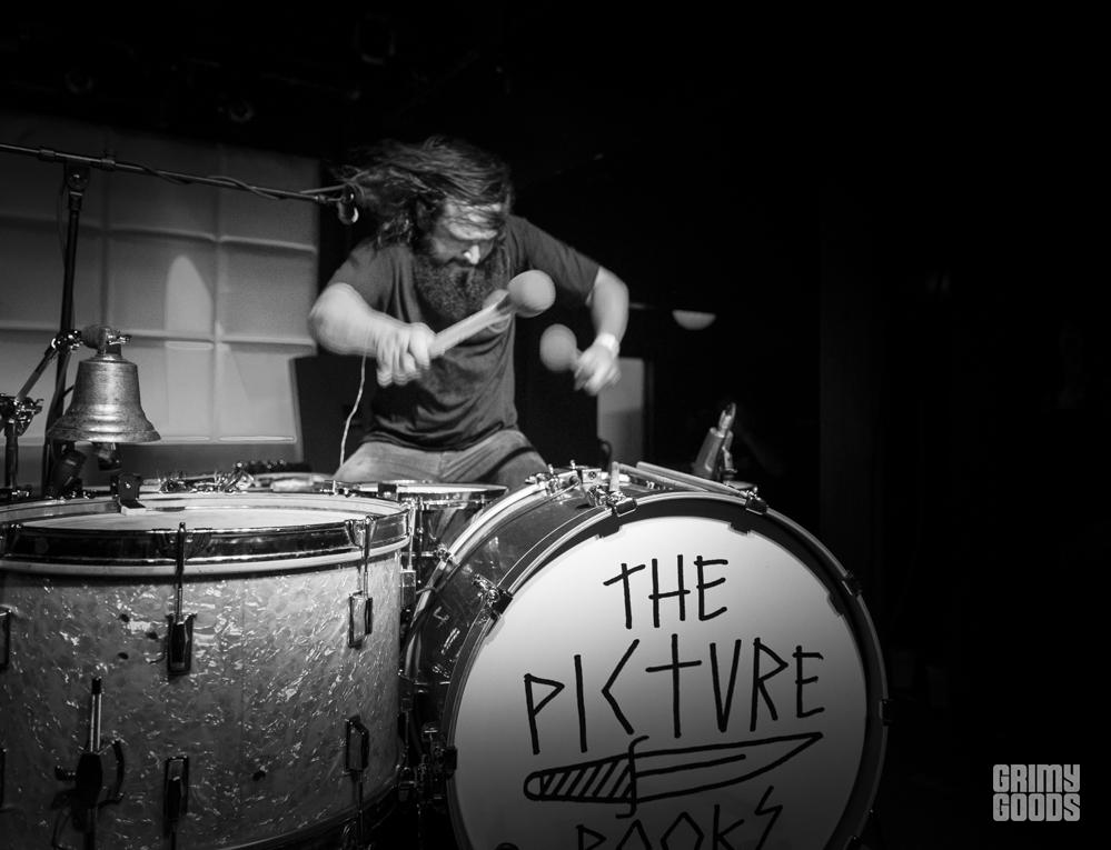 The Picturebooks band photos