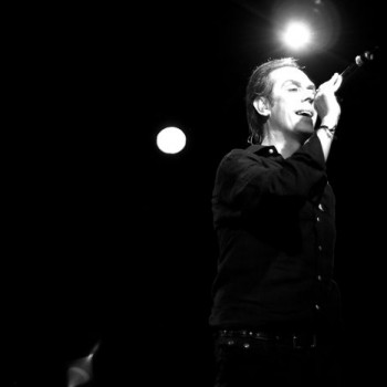 Peter Murphy photos