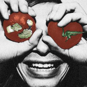 Terry Malts Album Cover