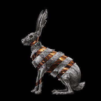 jack-rabbit-san-fermin