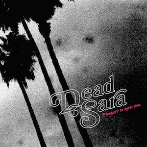 Dead Sara Pleasure to Meet You Album Art