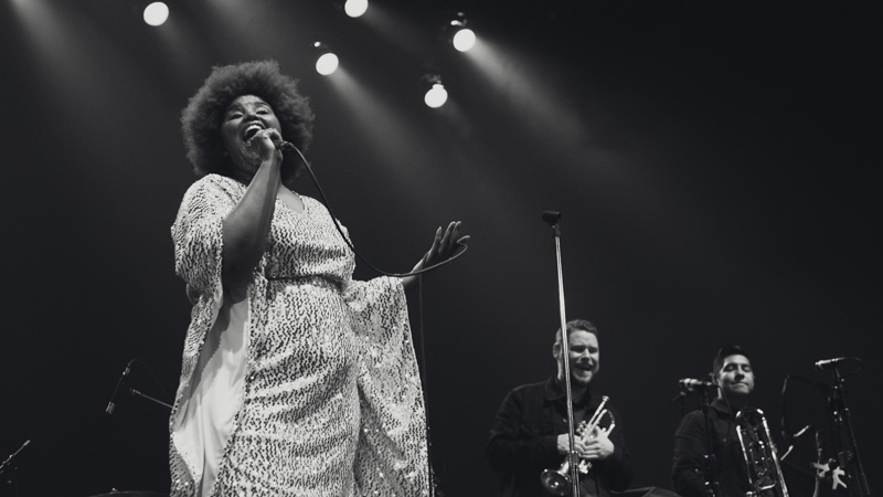 The Suffers