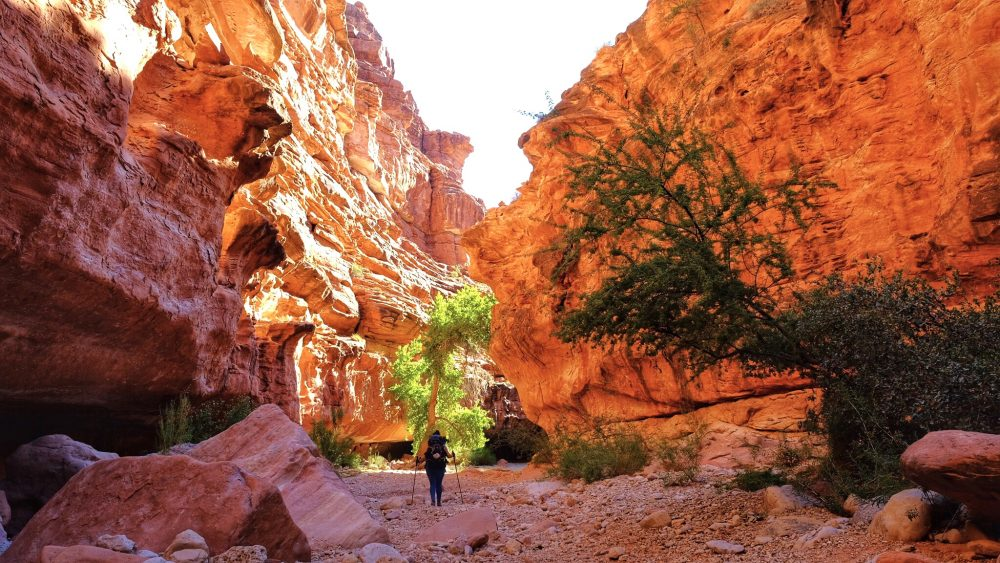 hiking trail to Havasupai Falls